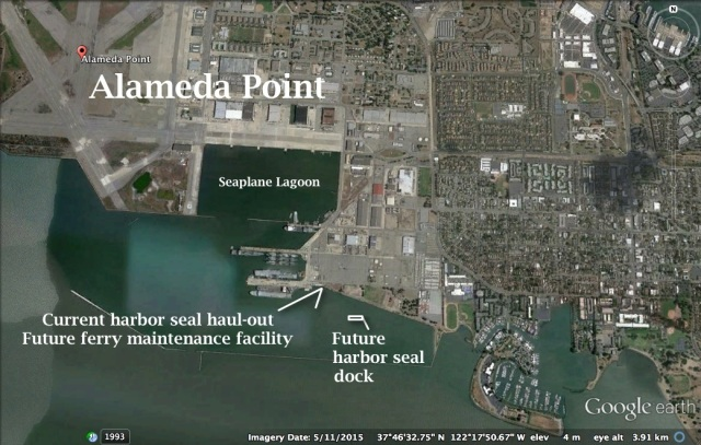 alameda-point-south-with-harbor-seal-haul-out