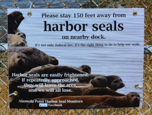 Harbor seal sign Alameda Point